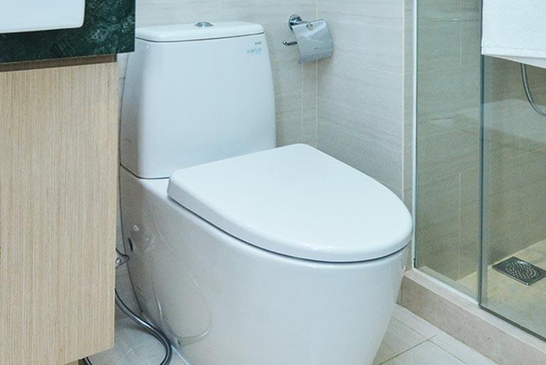 Toilettenabflüsse können leicht verstopfen.
